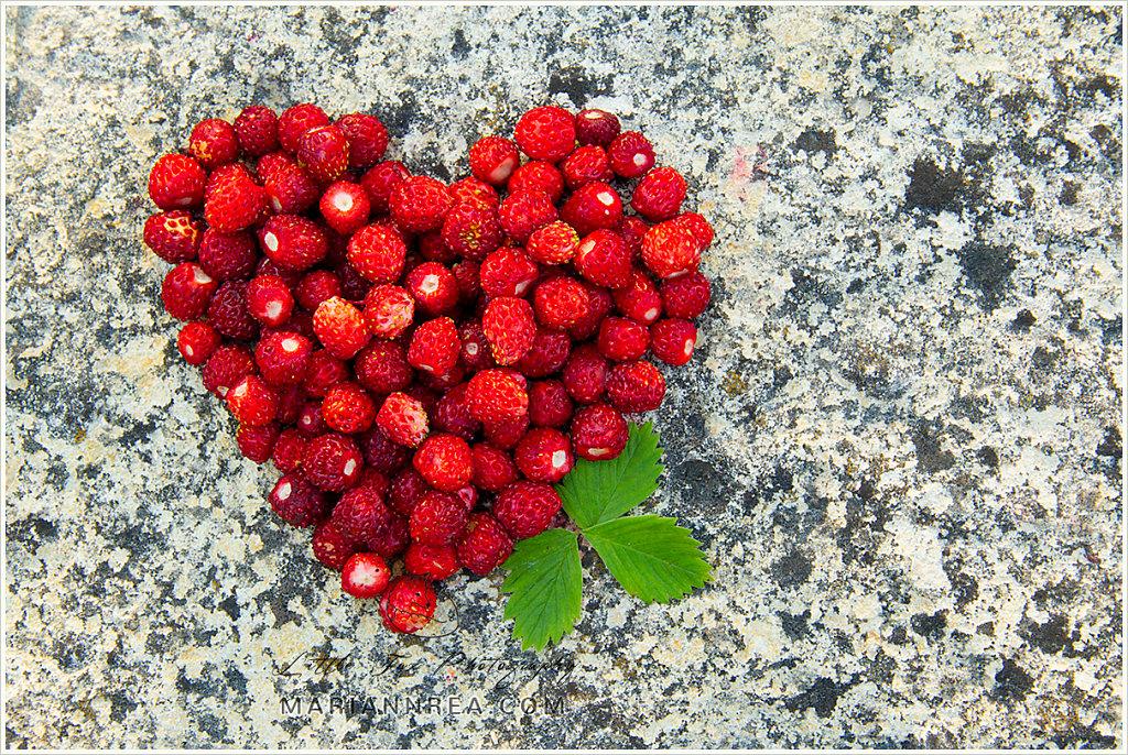 Wild strawberry heart
