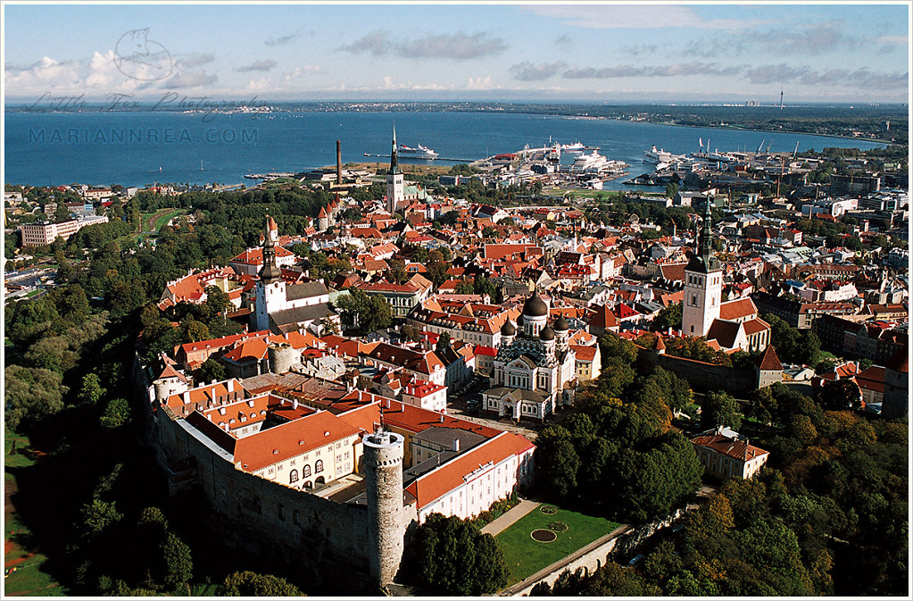 Toompea and the old town of Tallinn from above