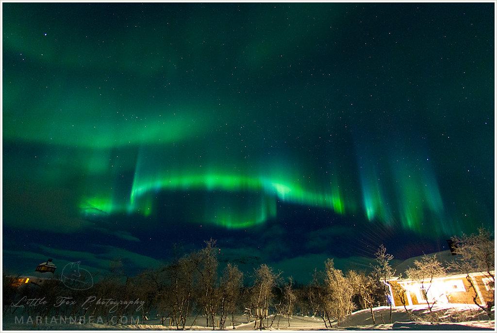 Blue and green auroras